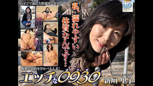 [4002-PPV-PLA0032] Satoko Aragaki - HeyDouga