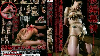 [ADV-R0384] Yearning For Hardcore Bondage Aya Hirahara - R18