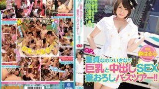 [PPPD-401] Cherry Boy Loses His Virginity By A Busty MILF! Harura Mori - R18