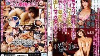 [SMA-817] This Cute, Chubby Young Wife With Big Tits Took Some Viagra For Women And Now Her Body's So Sensitive She'll Fuck Anything, Anywhere - Squirting And Creampies Galore! Iku Sakuragi - R18