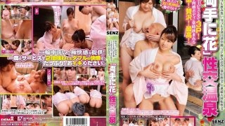 [SDDE-335] A Hot Girl in Each Hand: Sex Hot Spring - R18
