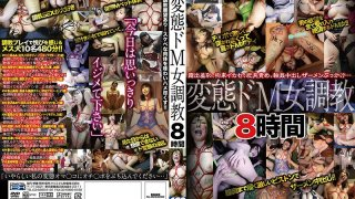 [CADV-660] Breaking In A Perverted Maso Bitch 8 Hours - R18
