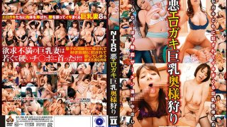[NITR-479] Erotic Bad Girls - Hunting For Married Women With Big Tits - BEST 2 - R18