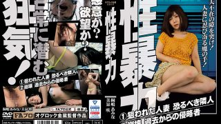 [HOKS-085] Sexual Shame The Shaming Of A Housewife My Neighbor Is A Fearsome Homewrecker An Intruder From The Past - R18