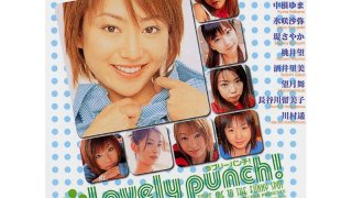 [HDV-036] Lovely punch! - R18