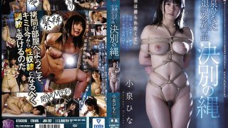 [JBD-262] Hinata Koizumi's Retirement Commemoration Video The Bonds Of Farewell - R18